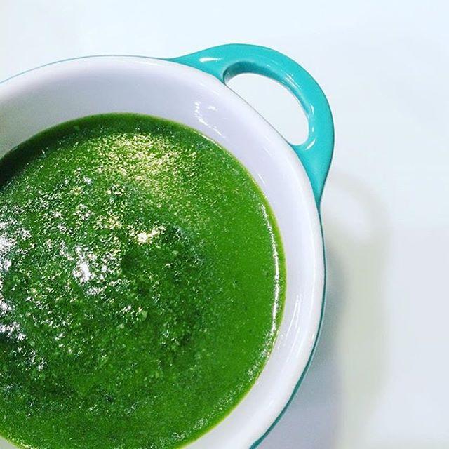 michellejobins delicious creation using cuisinartcanadas Hurricane Pro BeyondBlending Pesto Foodie